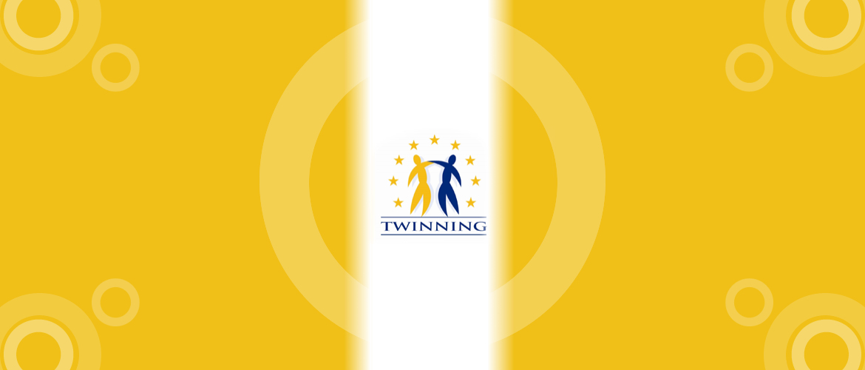 twinning_image